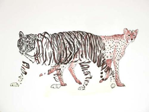 Emptyland-ribbon-effect-animal-drawing-by-Jaume-Montserrat-542364655