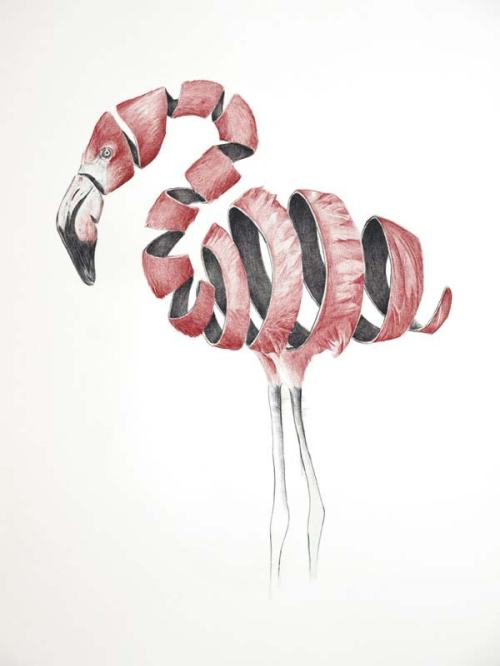Emptyland-ribbon-effect-animal-drawing-by-Jaume-Montserrat-67326474